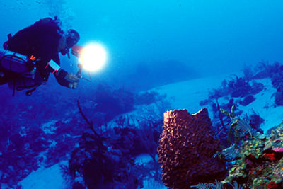 Scuba Diving in Cayman Brac